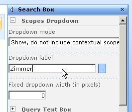 customsearchpagescope6